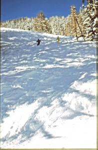 Natur erleben wollen viele Wintersportler in Bayern - die meisten immer noch am liebsten auf Skiern.