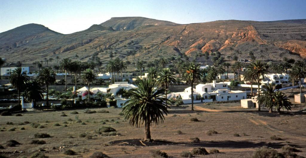 Lanzarote, Tal der 1000 Palmen