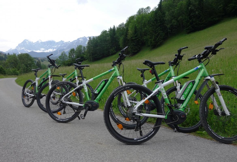 Mit dem E-Bike sind auch unsportliche Menschen gut unterwegs.