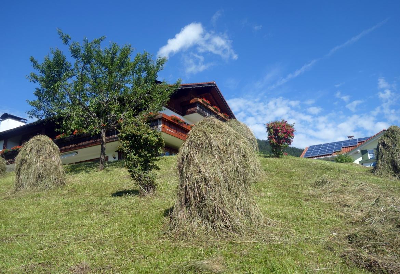 Hoinzen heißen die Holzgestelle, auf denen früher das Heu torcknete.