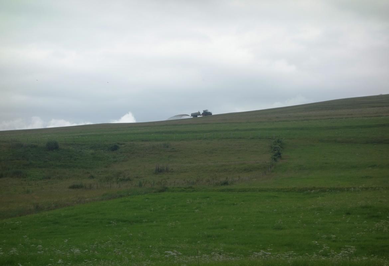 Der Duft nach Bergwiesen und Heu gehört zum Allgäu, an manchen Tagen aber auch der Geruch nach Gülle.