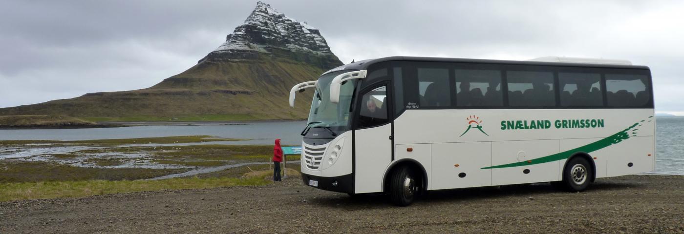 """""""Der Bus ist die Lösung"""""""